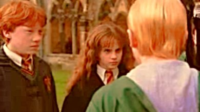 Photo of Harry Potter Teaches Us How Meaning is Socially Constructed