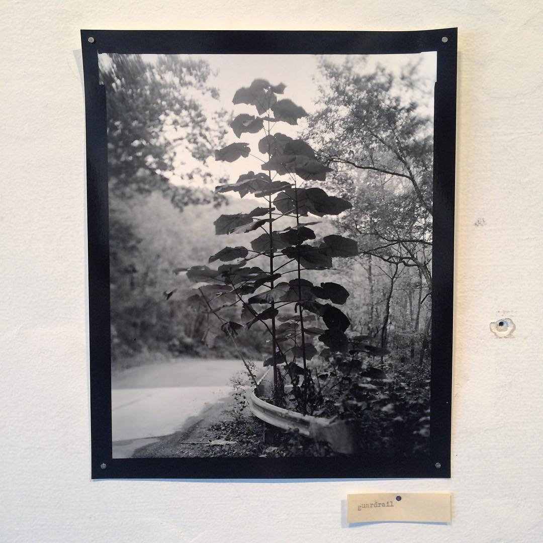 Lisa Elmaleh.  From 'The Lightness and the Dark'. Artist talk today at The White Room, 5pm.