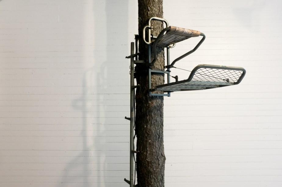 Playgrounds - Michelle Kohler