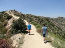 Griffith Park Running Trail