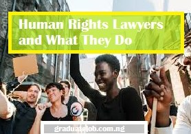 Human Rights Lawyers and What They Do