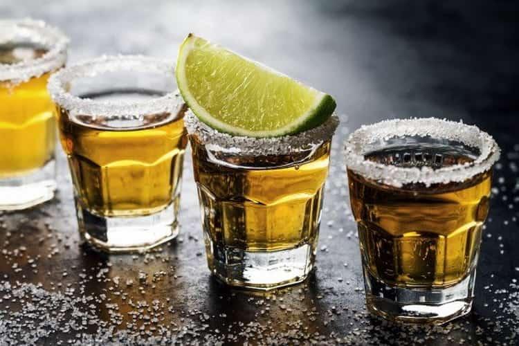 Tudo sobre como fazer tequila em casa de Mogon