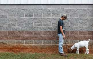 Daniel Dooley, 16, from Summerville, Georgia, walks his sister's goat, Molly, after their show at the Georgia National Fair in Perry, Georgia, on Saturday, October 7, 2017. (Photo/Kristin M. Bradshaw)