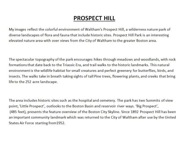 Prospect Hill