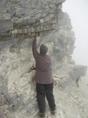 JCG points to a Chalk Ra. cress in it's limestone bluff habitat