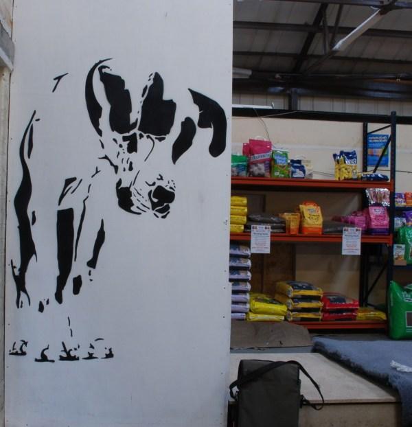 Dalmatian Dog Stencil Paco Graff