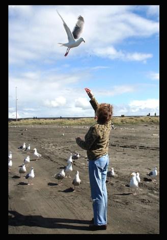 MY BEST FRIEND DIANA FEEDING THE GULLS AT CANON BEACH, OR.