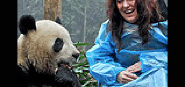 A FEW PANDA CENTER HIGHLIGHTS…VIDEOS AND PHOTOGRAPHY