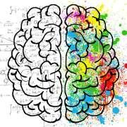 Le cerveau gauche AUSSI peut dessiner !