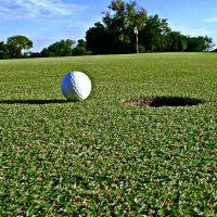 Golf piłka golfowa horągiewka dołek trawa drzewa