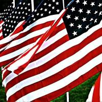 Łopoczące na wietrze flagi amerykańskie USA stany zjednoczone