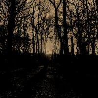 Mroczny ciemny jesienny las