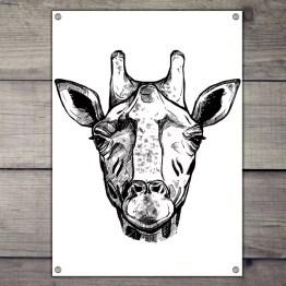 Tuinposter giraffe art