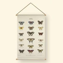 Textielposter vlinder overzicht