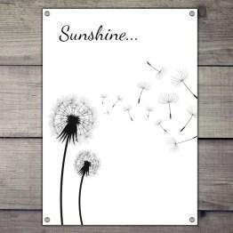 Sunshine tuinposter