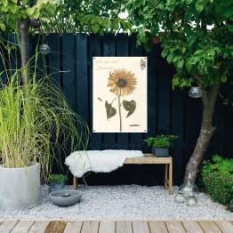 Tuinposter zonneschijn