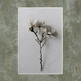 Akoestisch paneel bloem