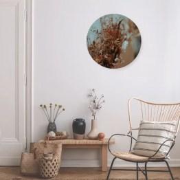 Cirkel droogbloemen