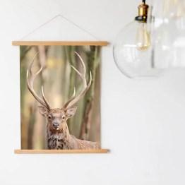 Wandhanger Deer