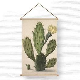 bloeiende vijgcactus