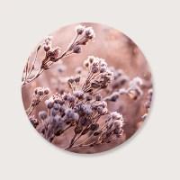 Muurcirkel frost