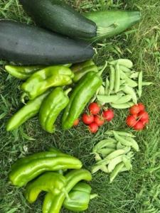 zucchini, peppers, tomatoes, peas