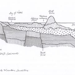 Diagram Of Dune Formation Lighting Circuit Wiring Uk Bay Natal The Bluff And Berea  Its