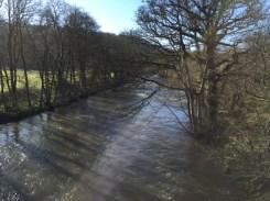 The Tamar River