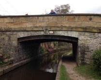 head popping over bridge