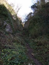 Ebbor Gorge normal thing