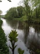 rainy Union Canal