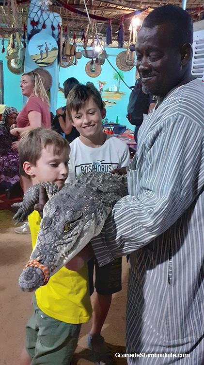 Crocodile du Nil dans une maison du village nubien Garb Sehel près d'Assouan Haute Egypte