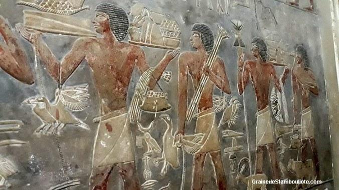 peintures du mastaba de Ptah-Hotep, plateau de Saqqara, Le Caire, Egypte