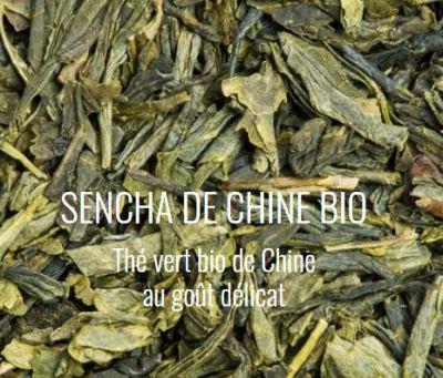 Sencha de chine bio thé vert