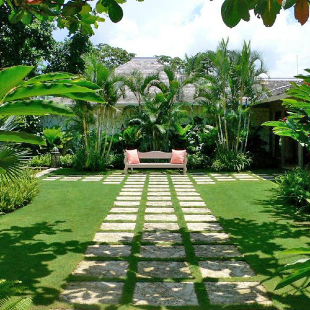 Diseo de Jardines en Panam  Grama Fina Panam