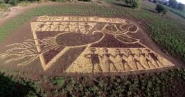 Land Art No.1