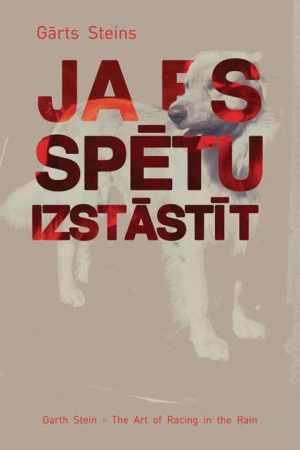Ja_es_spetu_izstastit_mazs-2_original.jpg