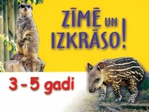 ziimee_original-1.jpg