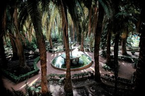 Garden of Palms, in the Carmen of the Martyrs