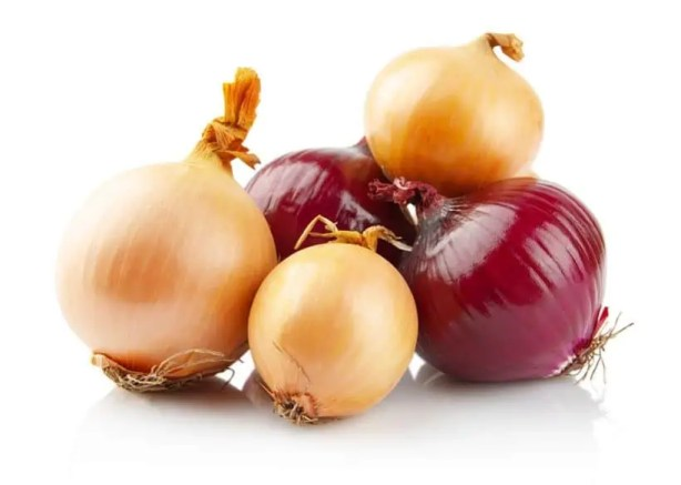 red and white onions