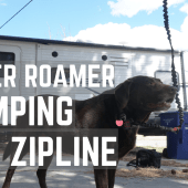 Ep. 142: Rover Roamer Camping Dog Zipline | RV travel tips tricks how-to