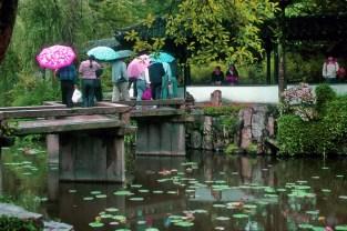 Jardin chinois-Jacky Bachelier