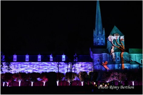 Nuits Romanes St Savin - 25
