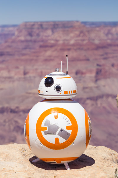 grand canyon wedding packages star wars elopement lipan point (7)