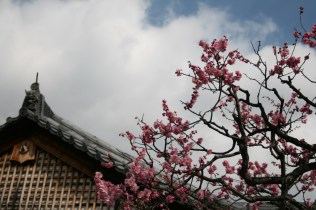 Kyoto_GG2