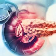 biostampante-3D-ENLIGHT