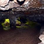Visite du tunnel de lave de la coulée 2004