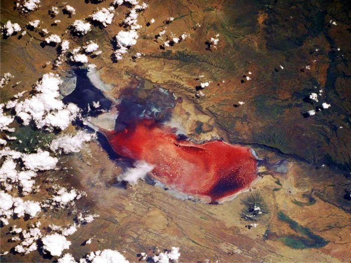 Lago Natron - 29 de los paisajes más surrealistas de nuestro hermoso planeta