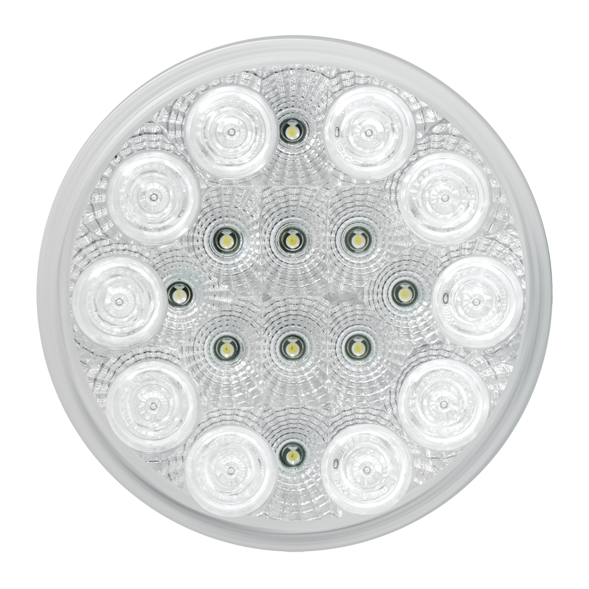 "77092 4"" Spyder LED Light in White/Clear"