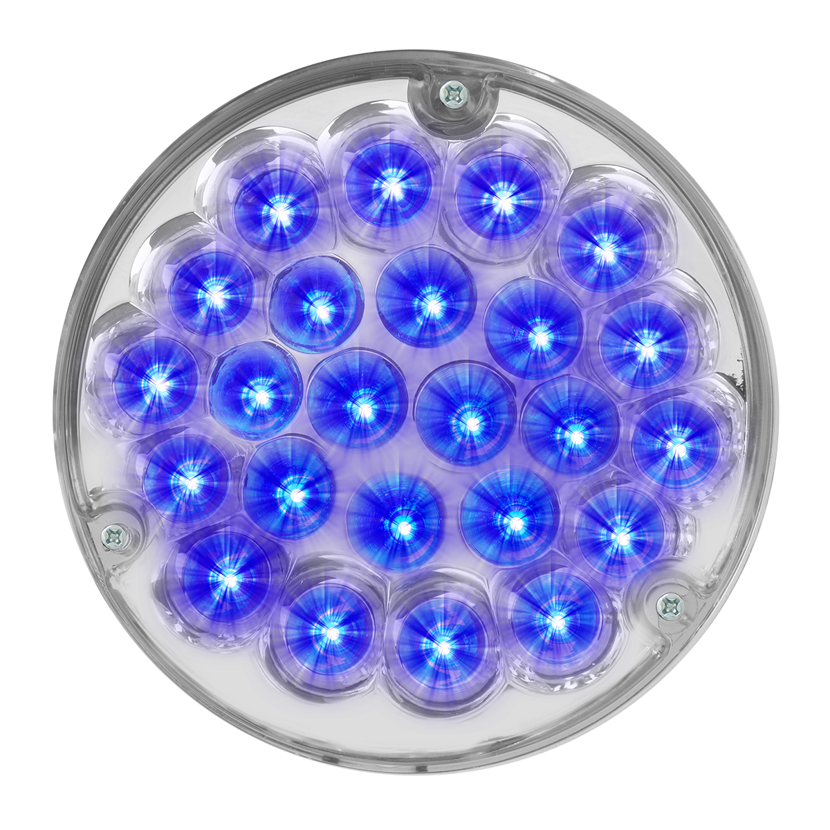 "82275 4"" Pearl LED Light Only in Blue/Clear"